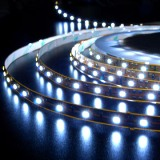 LED Strip & Module