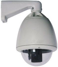 Outdoor PTZ - 30x Day/Night Sony CCD Dome