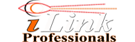 iLink Professionals, Inc.